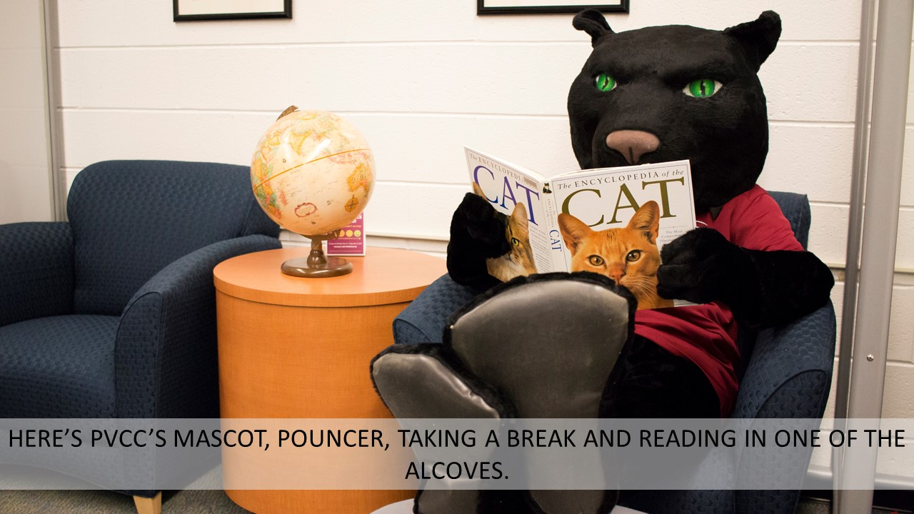 HERE'S PVCC'S MASCOT, POUNCER, TAKING A BREAK AND READING IN ONE OF THE ALCOVES.