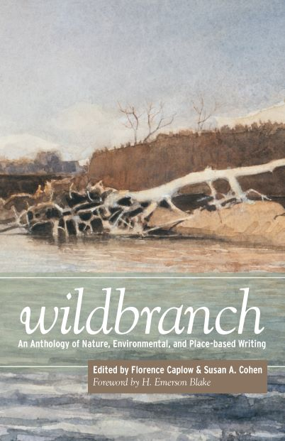 cover of book wildbranch