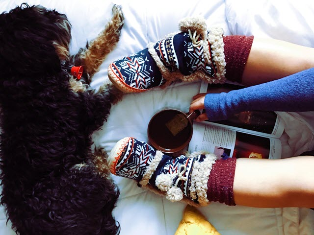 image someone reading with slippers, cup of cocoa, and a dog