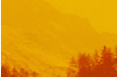 Gold Mountain Dreams