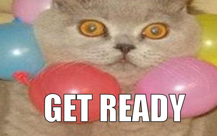 "cat meme ""get ready"""