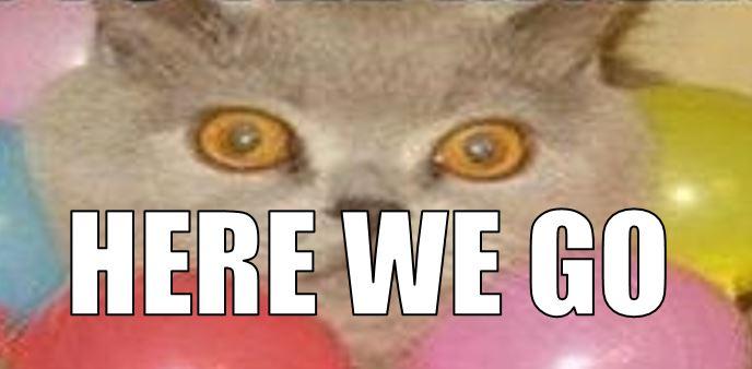 here we go cat meme