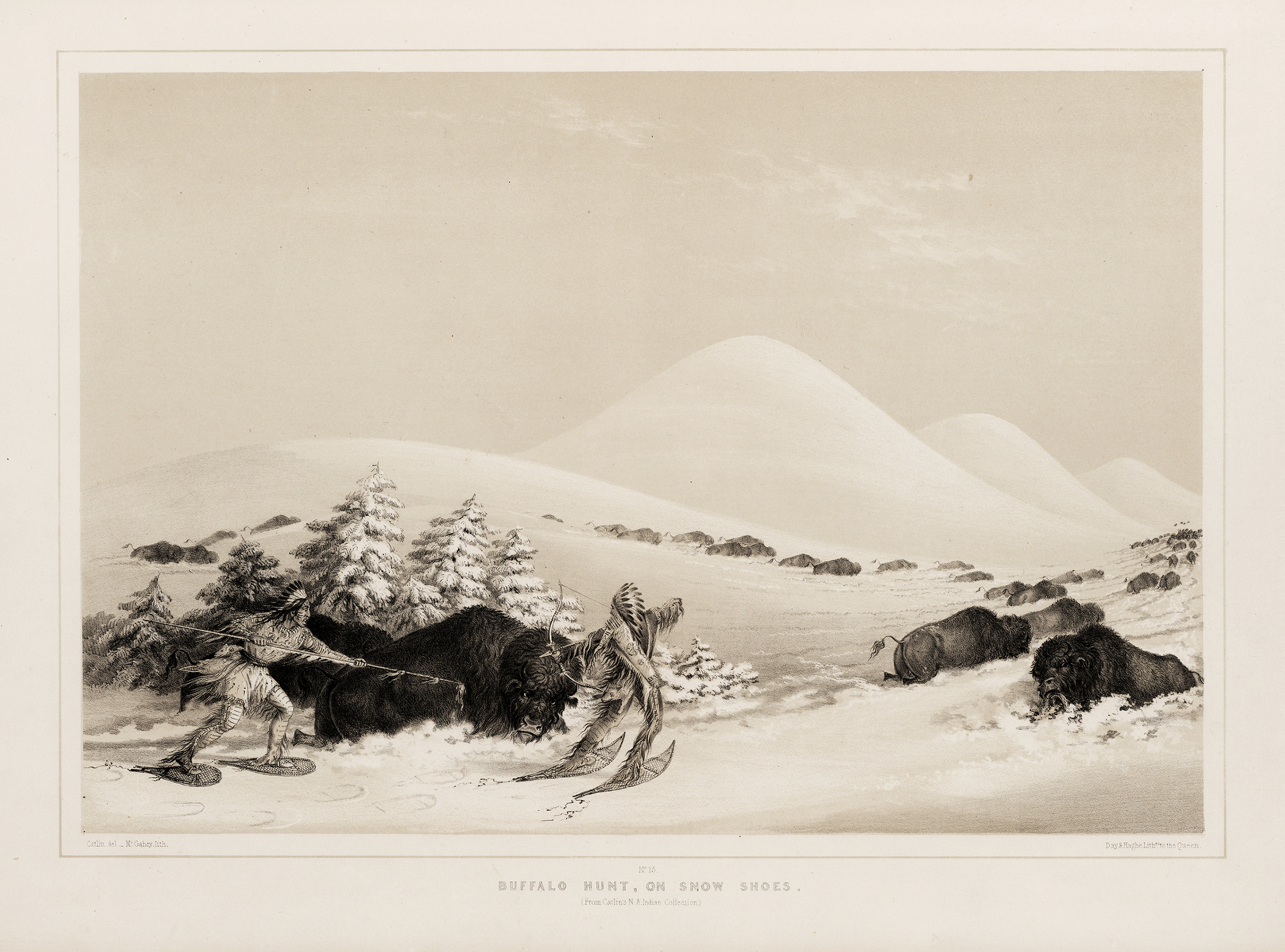 Buffalo Hunt, on Snowshoes