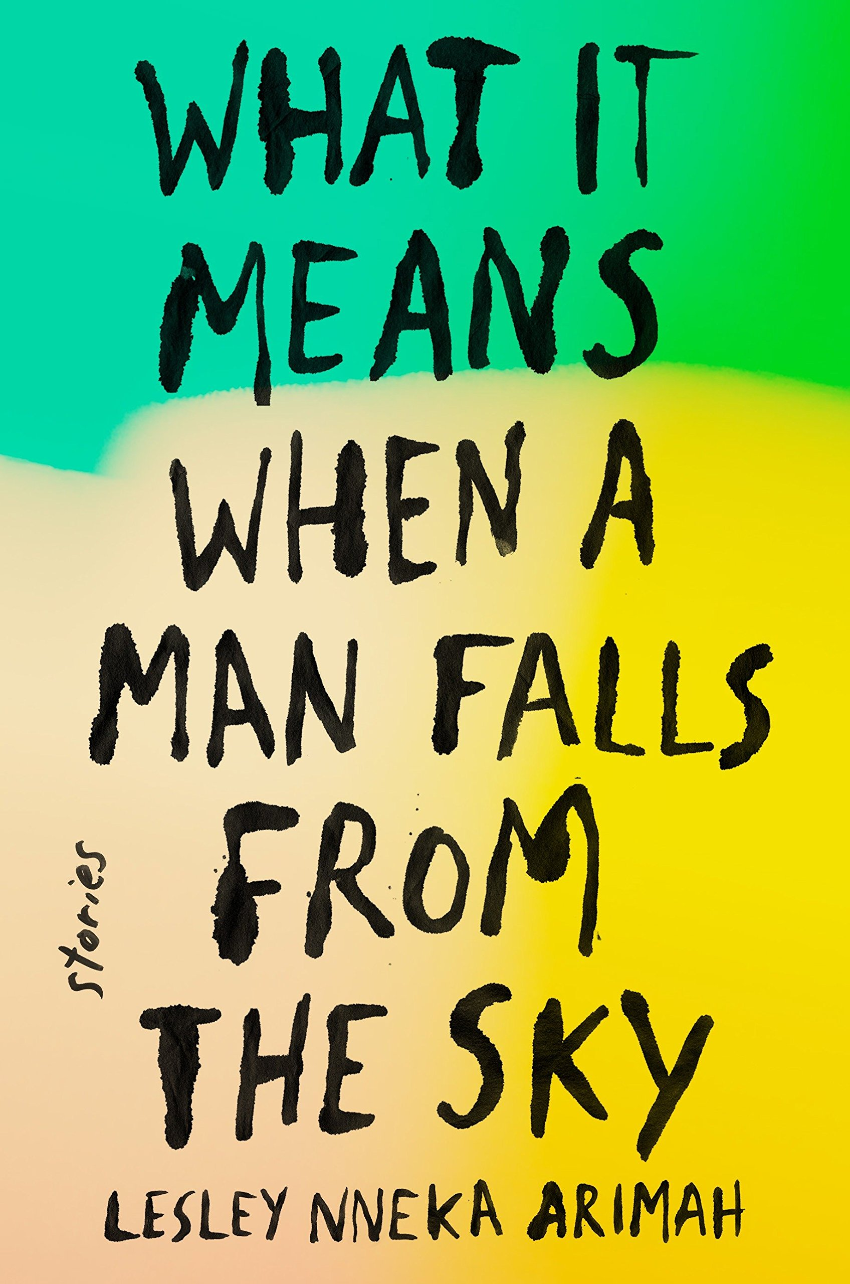 Book cover for What it Means When a Man Falls from the Sky