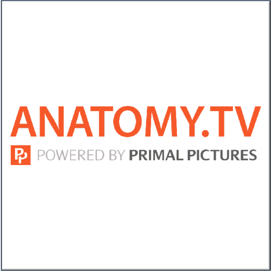 TDS Anatomy.TV logo