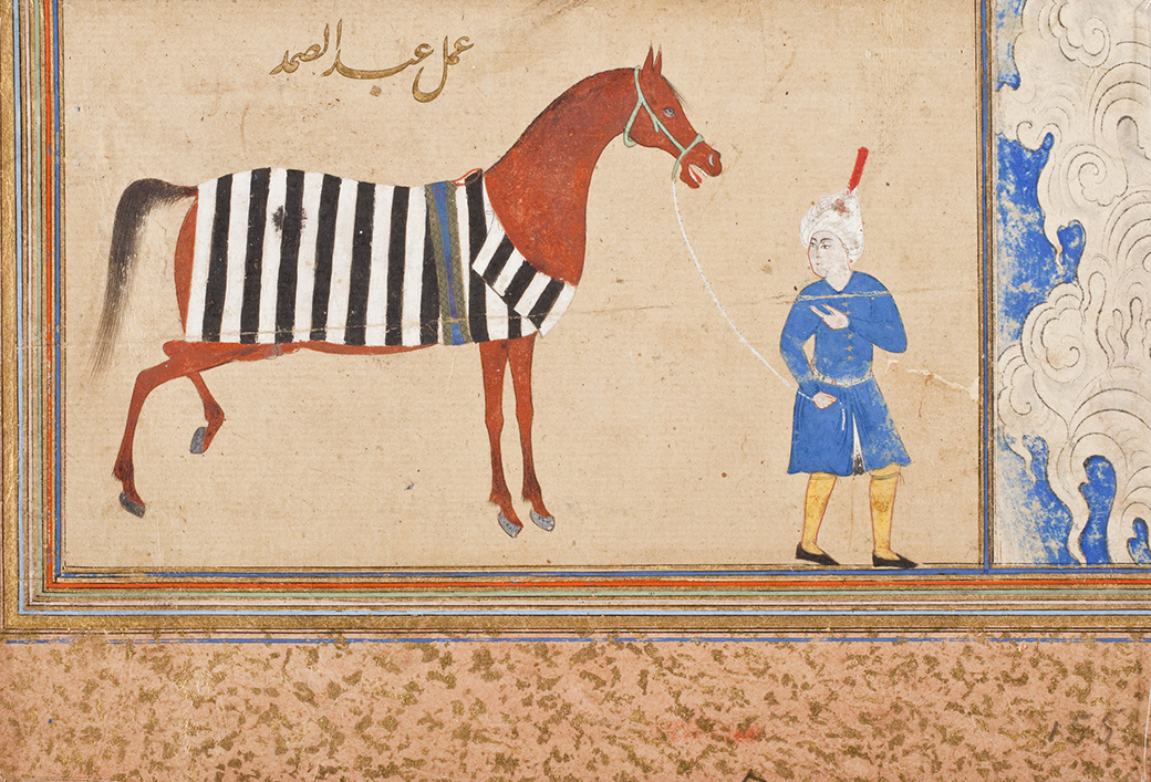 Horse wearing striped blanket with man wearing turban