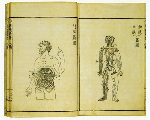 Anatomical drawings in Japanese book