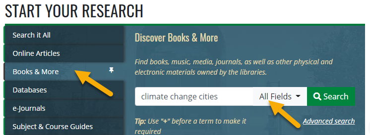 Books & More search from the library homepage