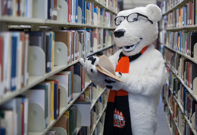 Klondike is reading a book in the bookstacks of Heterick Memorial Library.