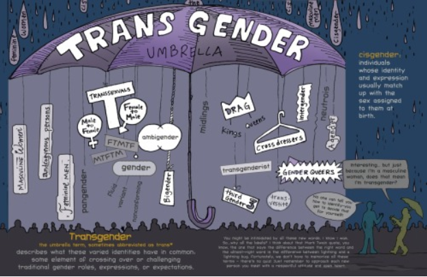 Transgender Umbrella