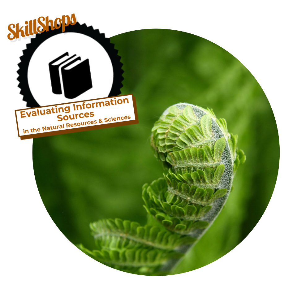 Evaluting Information Sources badge with book icon over backdrop of fern fiddlehead