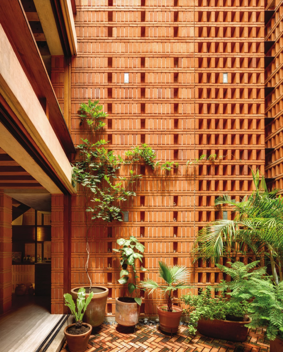 plants growing against a wall in an enclosed brick patio designed by Iturbide