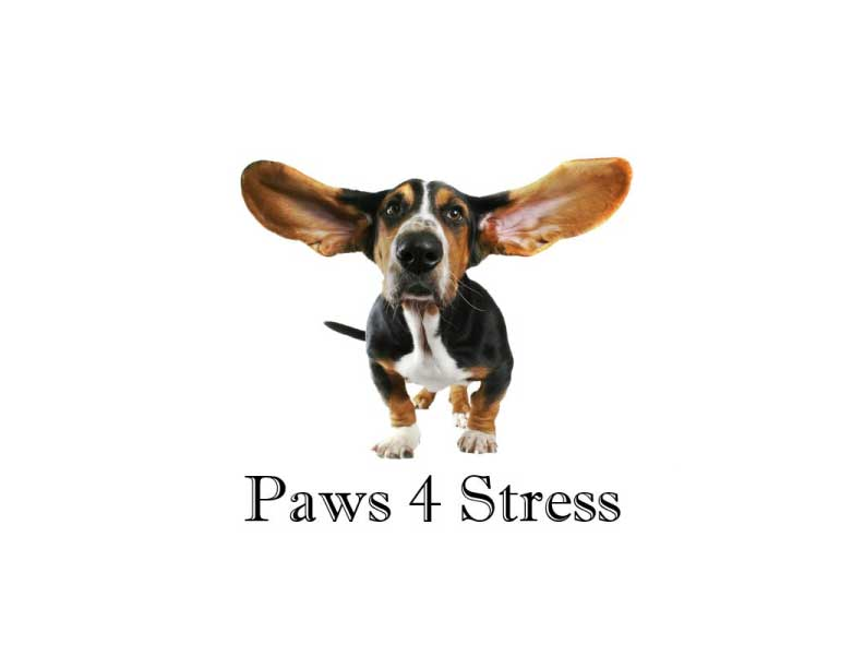 Paws 4 Stress - Therapy Dogs
