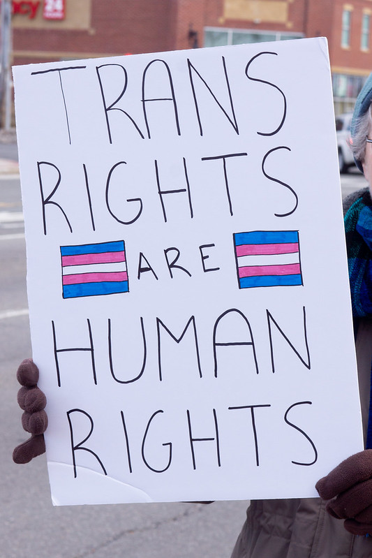 """Protest sign reading """"Trans rights are human rights"""""""