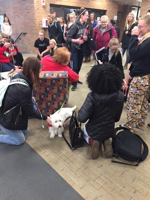 Therapy Dog Visit Photo