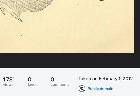 Copyright designation of Flickr image