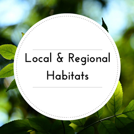 Local and Regional Habitats.