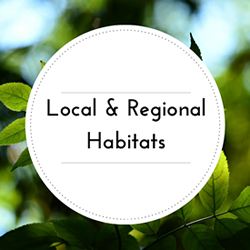 Go to Local and Regional Habitats page.