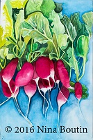 Watercolor by Nina Boutin (Radishes)