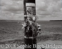 Photography by Sophie Birch-Brides