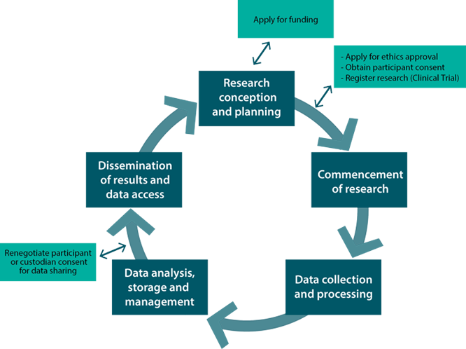 Diagram illustrating the research cycle