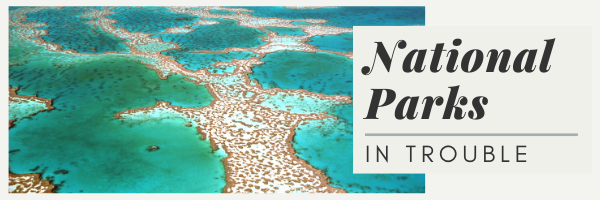 National Parks in Trouble Banner & Link