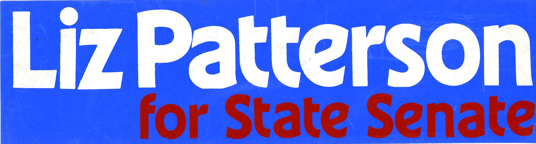 Liz Patterson for State Senate