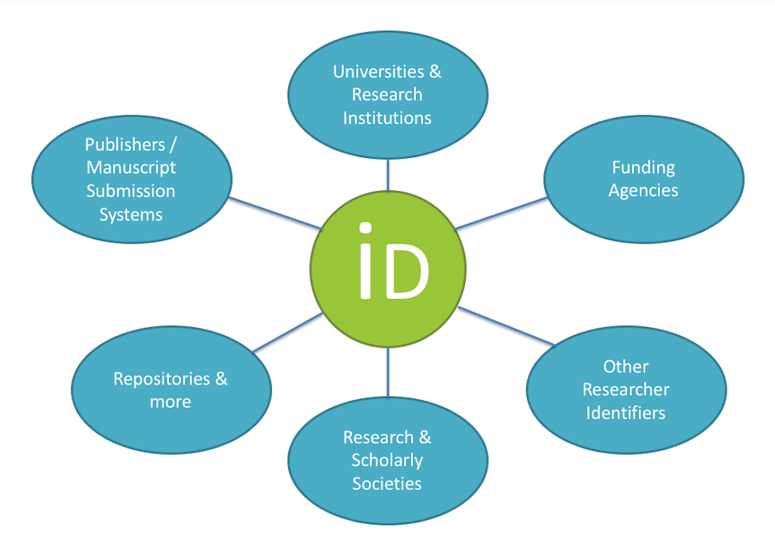 ORCID hub showing that ORCID links up with repositories, funding agencies, publishing submission systems, institutions, scholarly societies, and other research identifiers. Image provided by UPitt Library.