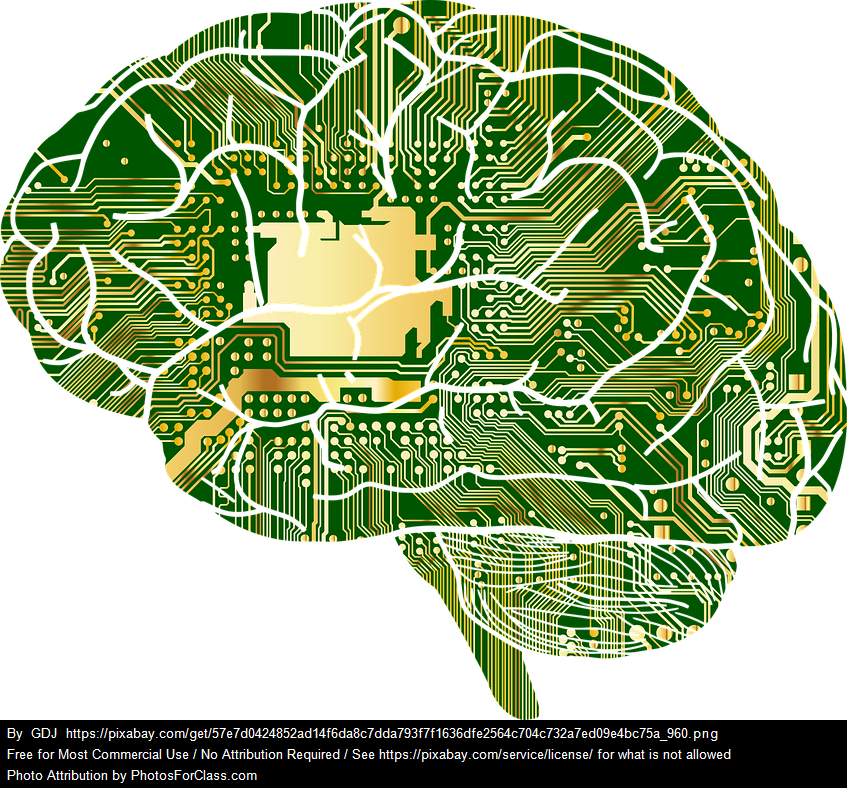 human brain filled in with circuit board pattern