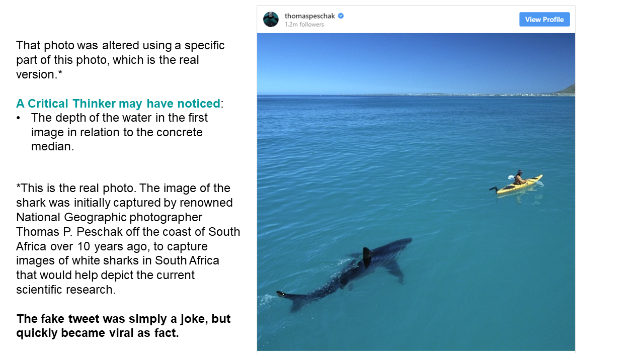 The image in the previous tweet was altered using a specific part of this photo, which is the real version.*  A Critical Thinker may have noticed: The depth of the water in the first image in relation to the concrete median. *This is the real photo. The image of the shark was initially captured by renowned National Geographic photographer Thomas P. Peschak off the coast of South Africa over 10 years ago, to capture images of white sharks in South Africa that would help depict the current scientific research.  The fake tweet was simply a joke, but quickly became viral as fact.