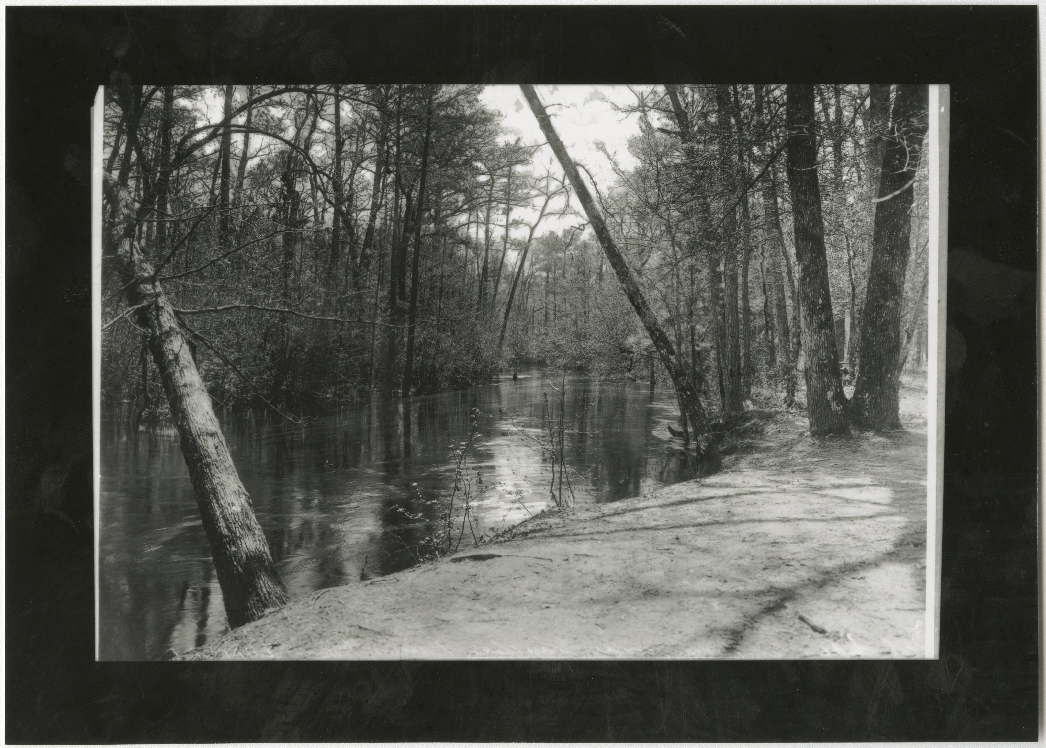 Photograph of Lumber River