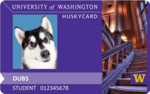 University of Washington Husky Card
