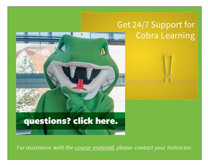 Get 27 7 support for cobra Learning