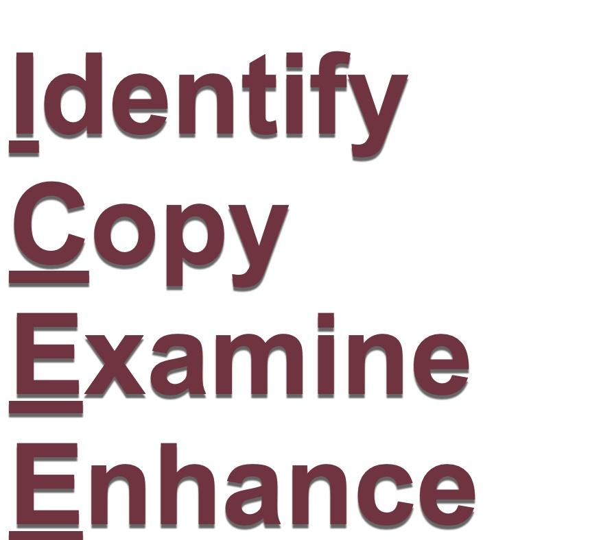 ICEE = Identify, Copy, Examine, Enhance