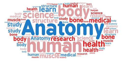 Word cloud with medical terminology