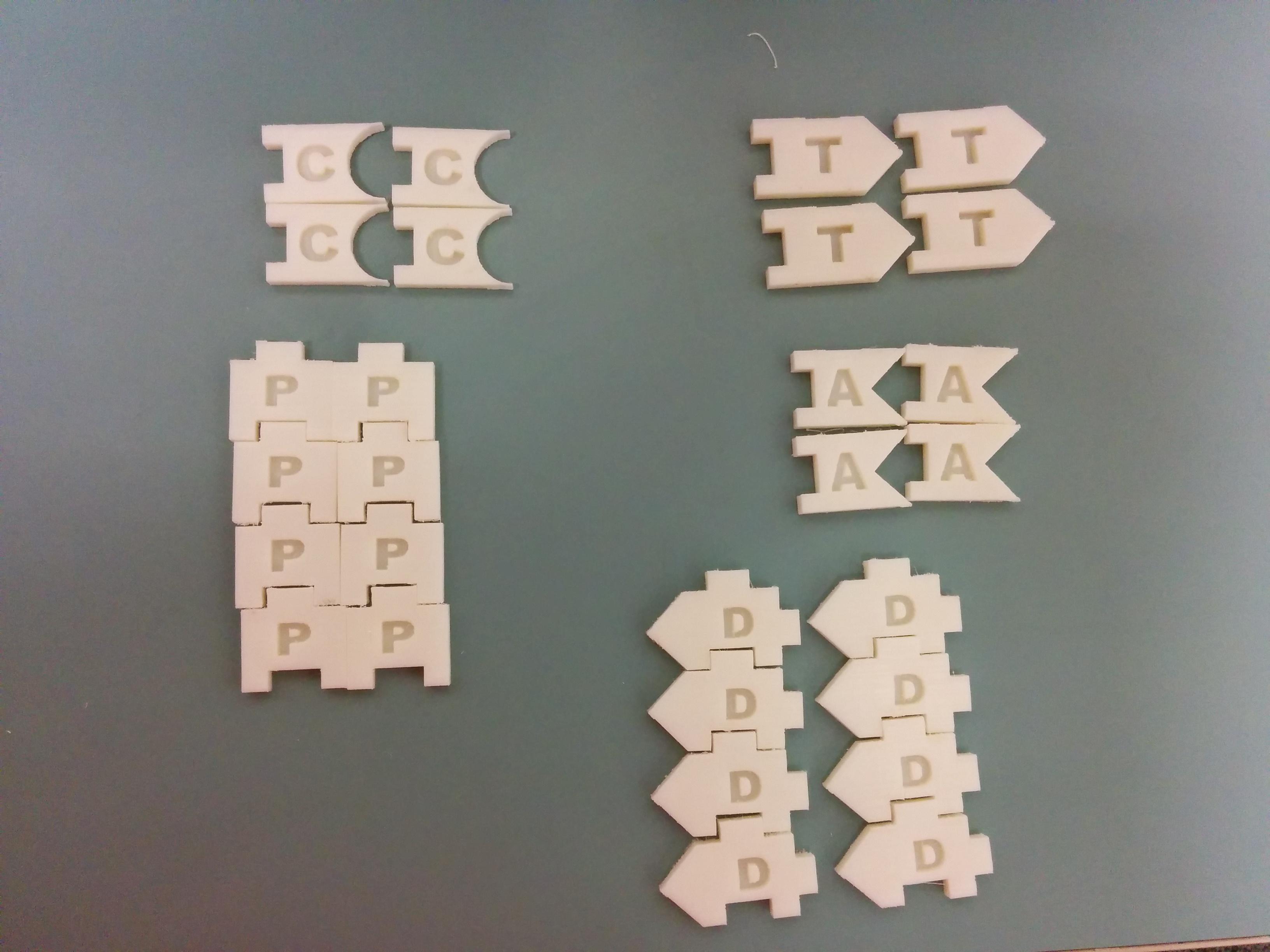 3D model of DNA set pieces