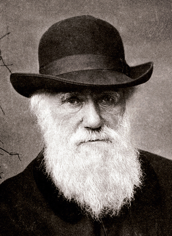 Picture of Charles Darwin from 1880