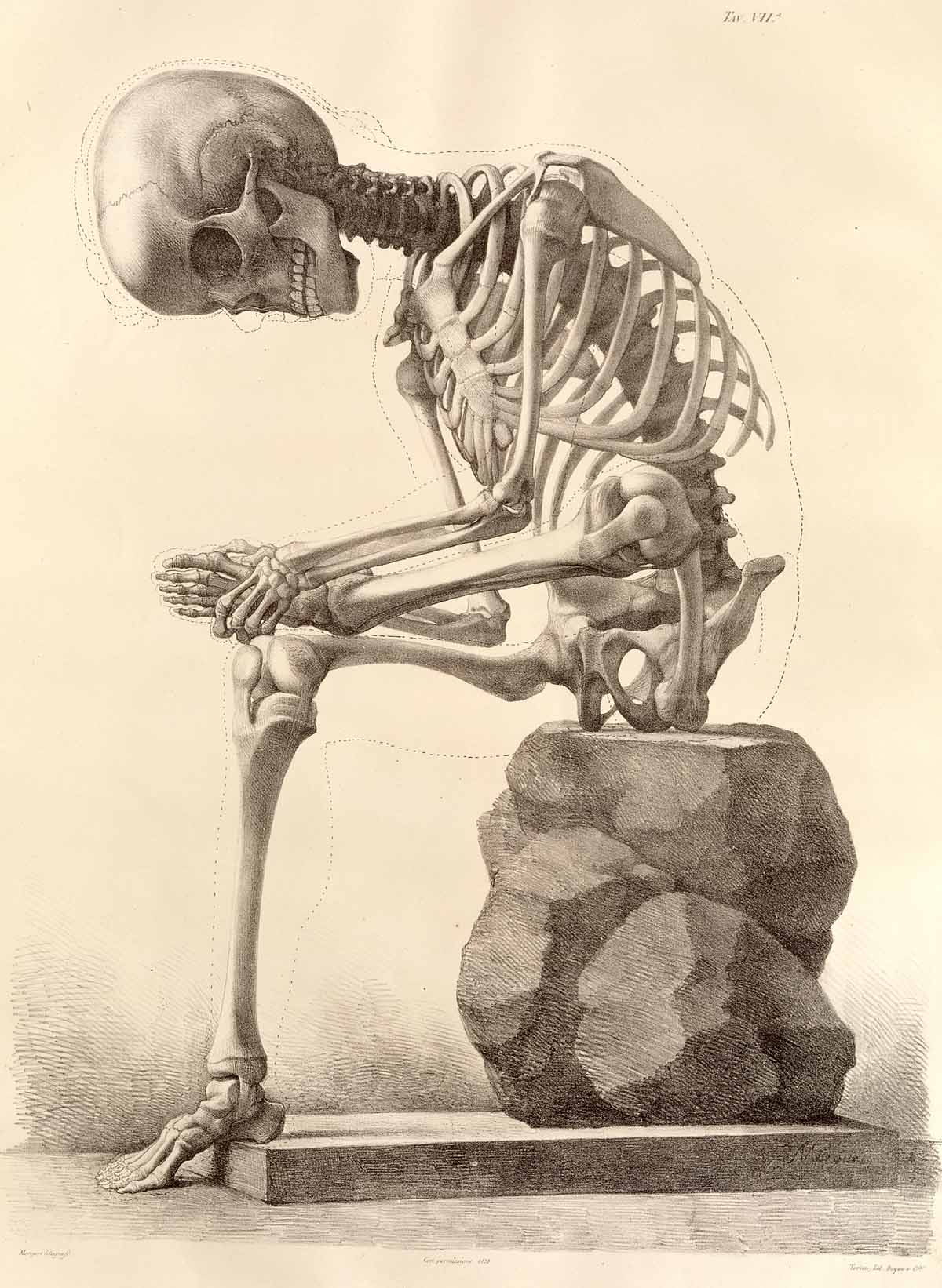 drawing of a skeleton sitting on a rock, leaning forward