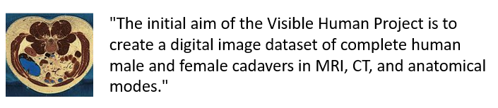 """The initial aim of the Visible Human Project is to create a digital image dataset of complete human male and female cadavers in MRI, CT, and anatomical modes."""