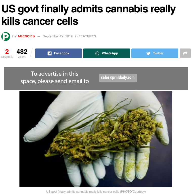 US Govt finally admits cannabis really kills cancer cells