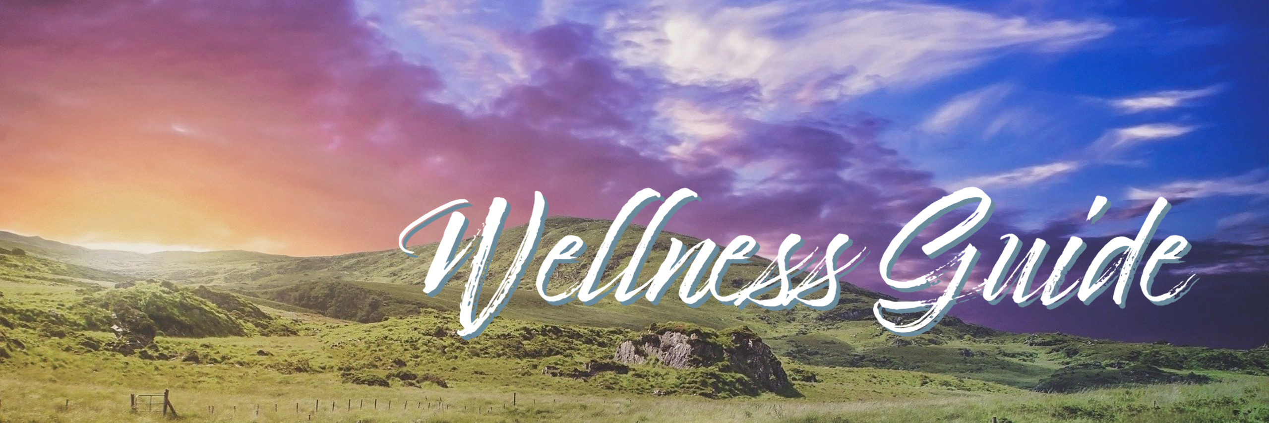 wellness guide banner