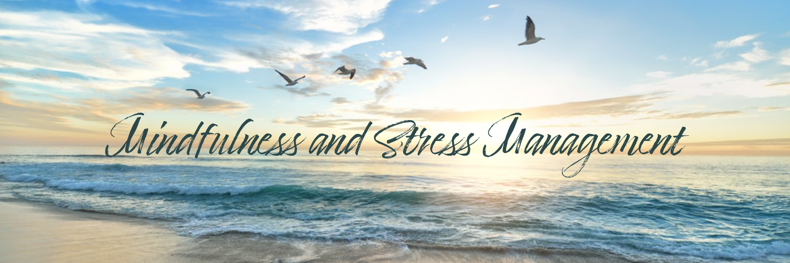 banner that says mindfulness and stress management