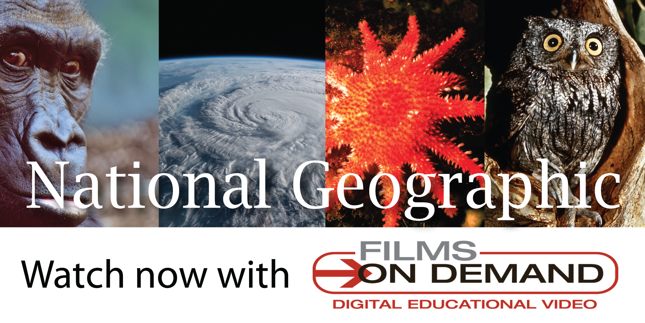 Watch National Geographic streaming films