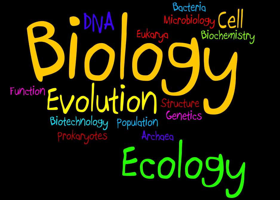 """Biology"" on black background surrounded by descriptive text: cell, dna, bacteria, etc."