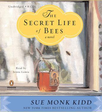 Summary secret Life of Bees