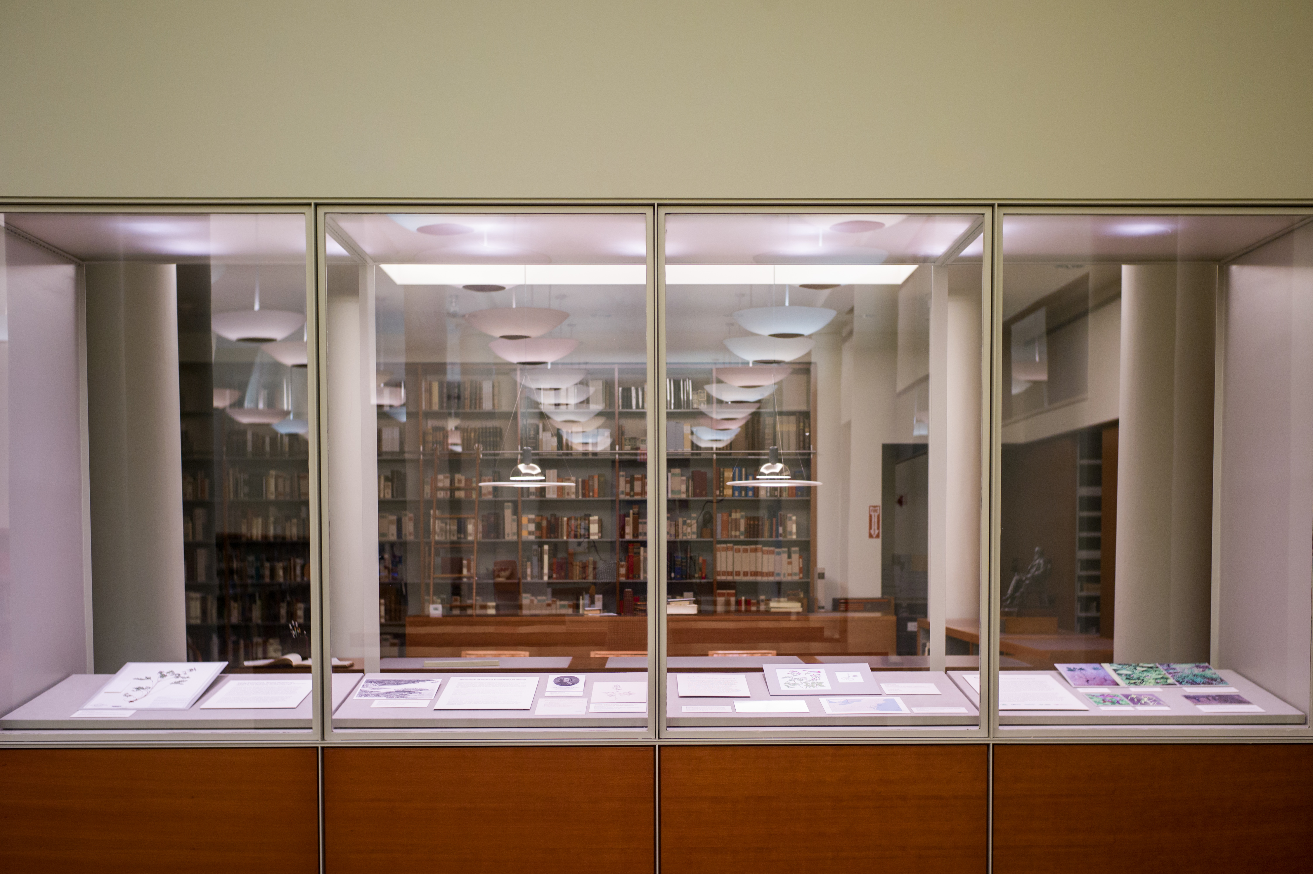 Photograph of library rare book room