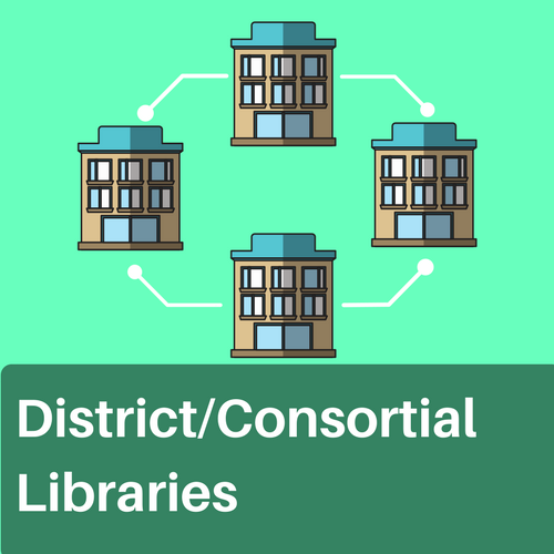 District or consortial library examples