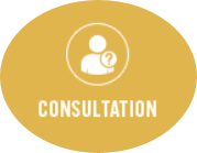 Book a Research Consultation