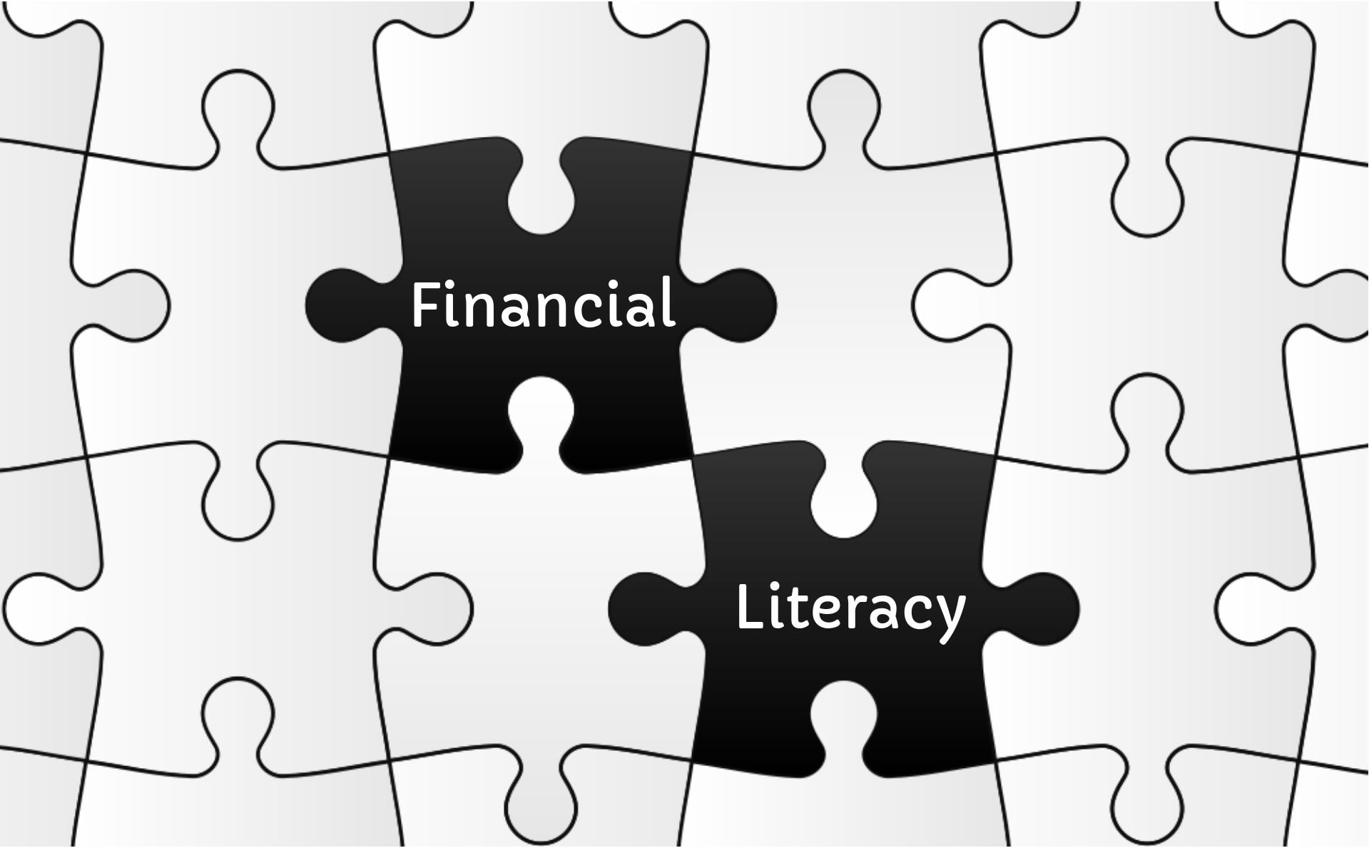puzzle pieces with the words financial and literacy