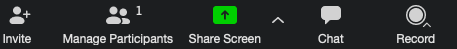 zoom options bar with share screen